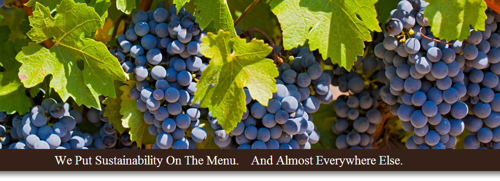 BC Wineries